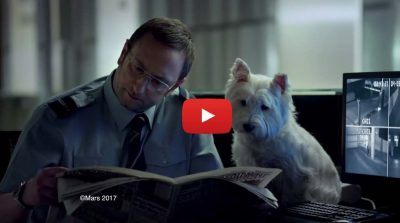 Transcreation inglese italiano spot tv cibo per cani